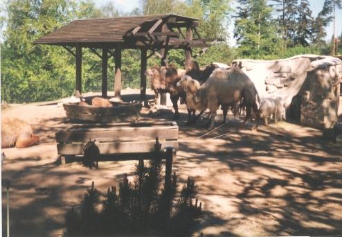 Liberec zoo